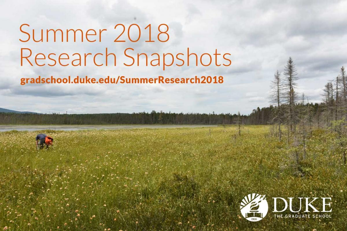 Summer Research Snapshots 2018