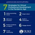 Virtual professional development tips